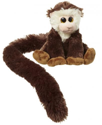 Capucijneraapje met lange staart