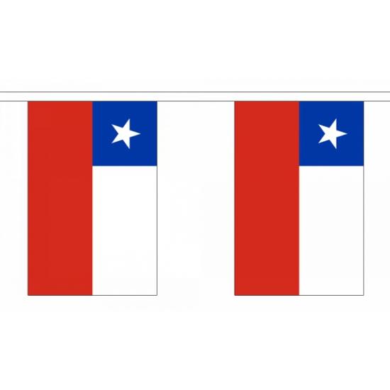 Chili vlaggenlijn 9 meter