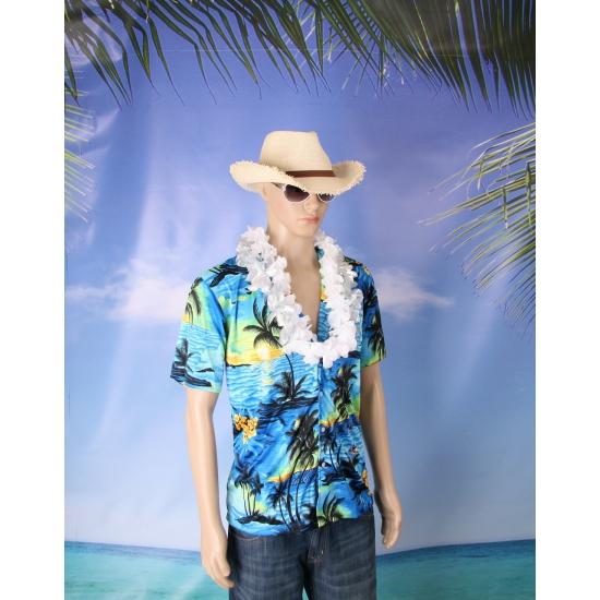 Hawaii verkleed set voor heren maat XXL