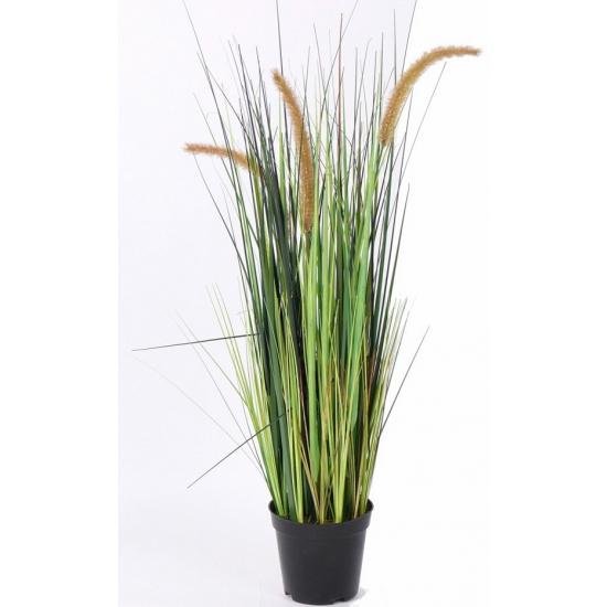 Kunt grasplant in pot 100 cm