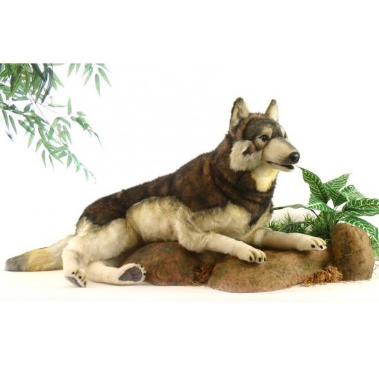 Levensechte pluche liggende wolf 100 cm