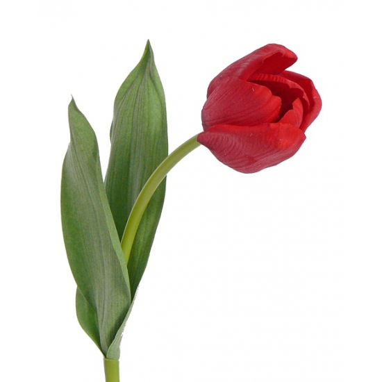 Natural touch tulp rood