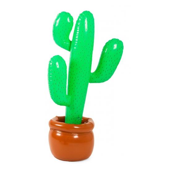 Opblaas cactus in pot 85 cm