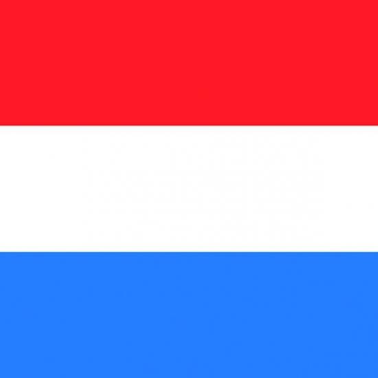 Papieren servetten Nederlandse vlag