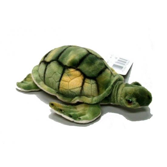 Schildpadden knuffel groen 18 cm