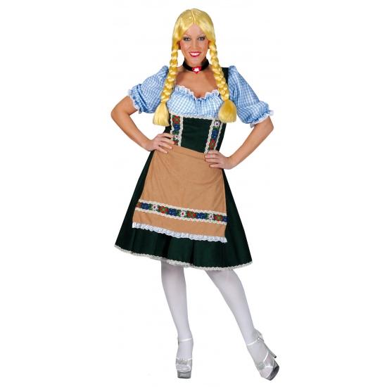 Verkleedkleding Heidi jurkje groen blauw